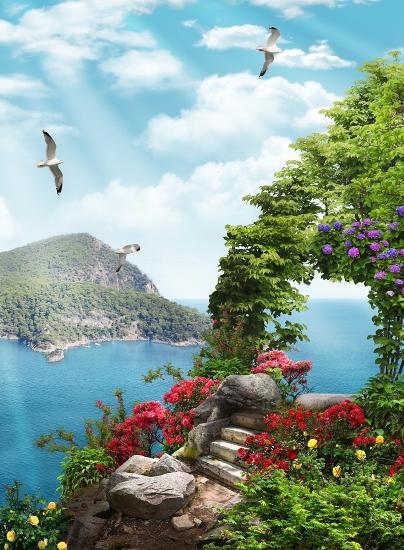 3D Фотообои «Цветы на скалистой вершине»
