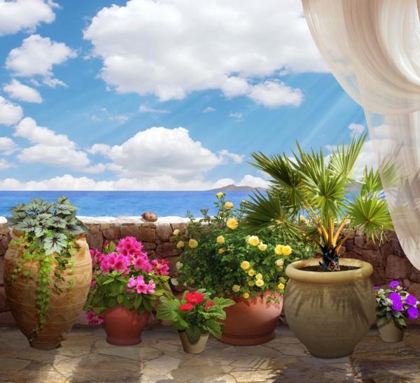 3D Фотообои «Горшки с цветами»