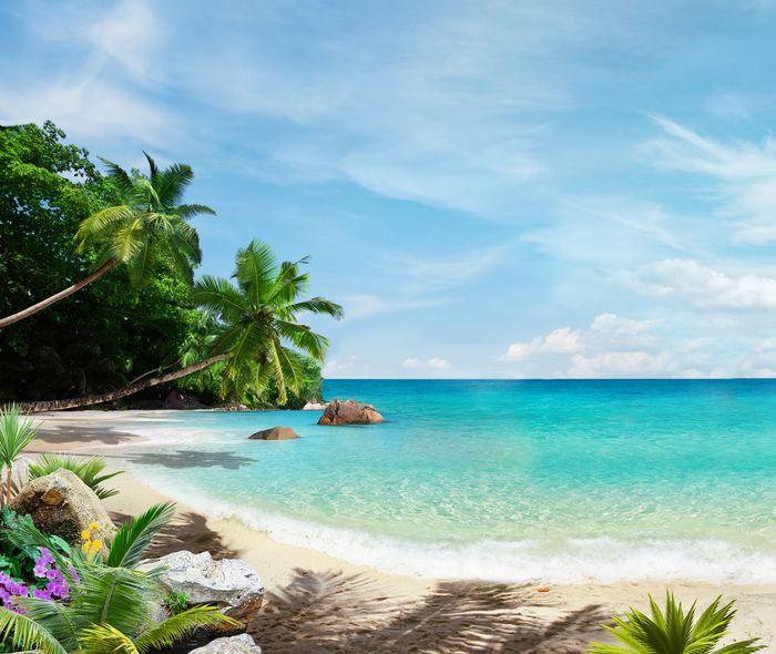 3D Фотообои «Тропический пляж»<br>kit: None; gender: None;
