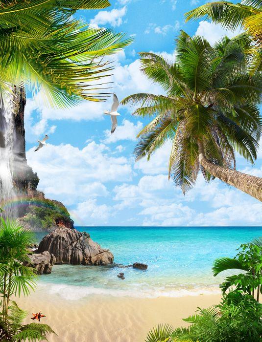 3D Фотообои «Тропический рай»<br>kit: None; gender: None;