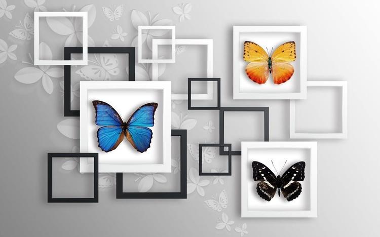 3D фотообои «Коллекция бабочек» вид 1