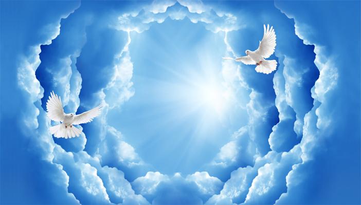 """3D фотообои """"Птицы в небе"""" вид 1"""