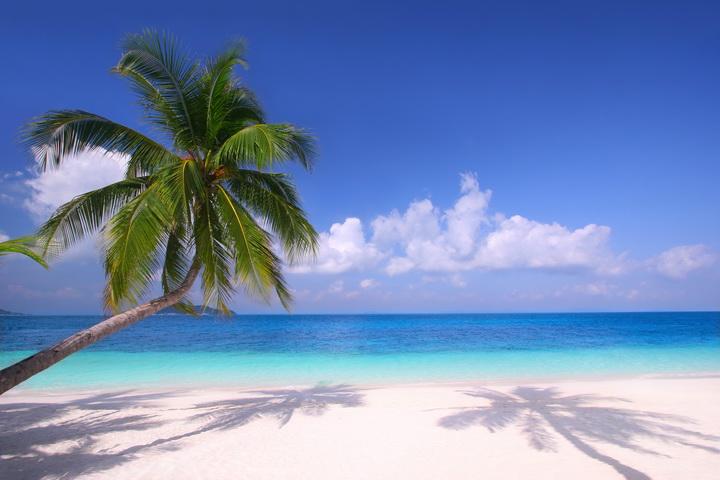 """3D Фотообои  """"Море и песок"""""""