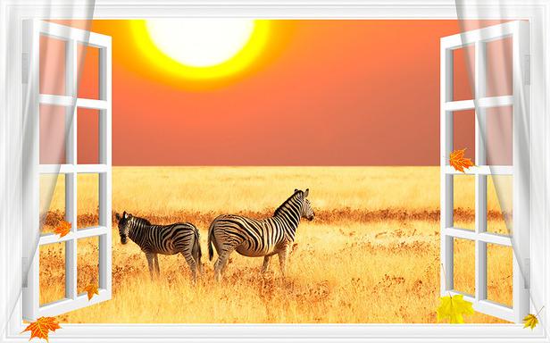 """3D Фотообои  """"С видом из окна на зебра"""""""