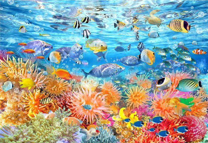 Детские 3D Фотообои «Коралловый риф и рыбки»<br>kit: None; gender: None;