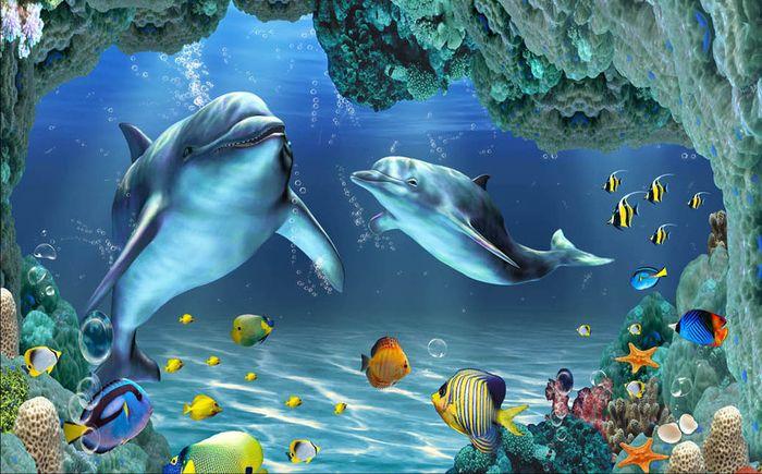 Детские 3D Фотообои «Пара дельфинов»<br>kit: None; gender: None;