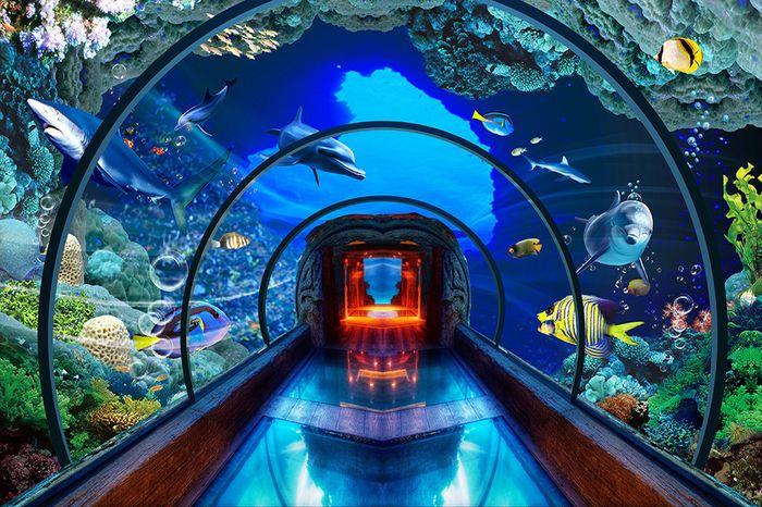 Детские 3D Фотообои «Панорамный аквариум»<br>kit: None; gender: None;