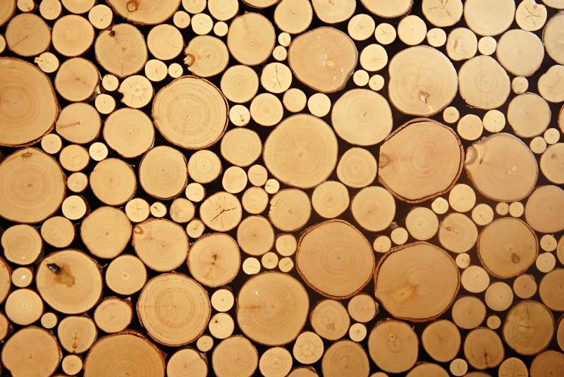 3D Фотообои БревнаФотообои «Бревна» - интерьер декорированный материалом из дерева считается роскошным и эксклюзивным, он смотрится красиво и оригинально, но тоже время создать инсталляцию из натуральных бревен в квартире не всегда представляется возможным.<br><br>Это кажется невероятным, но технологии 21 века и современная печать позволили сделать шаг навстречу будущему! Специалисты нашей Дизайн Студии разработали, нечто изумительное и прекрасное. Такие обои под бревна с объемным эффектом, невозможно отличить от естественного художественного исполнения по дереву.<br><br>Создайте в Вашем доме настоящий шедевр. Изображение отлично подойдет для гостиной, спальни, бильярдной, каминной, комнаты отдыха и тематических заведений.<br>kit: None; gender: None;