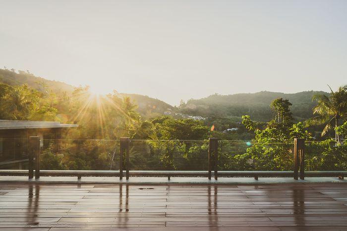 """Фотообои """"3D Фотообои «Терраса с видом на тропический лес»"""""""
