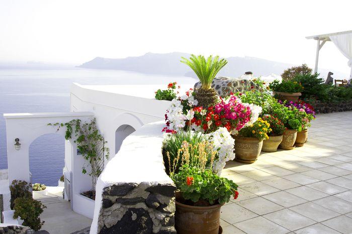 3D Фотообои «Горшки с цветами на террасе»