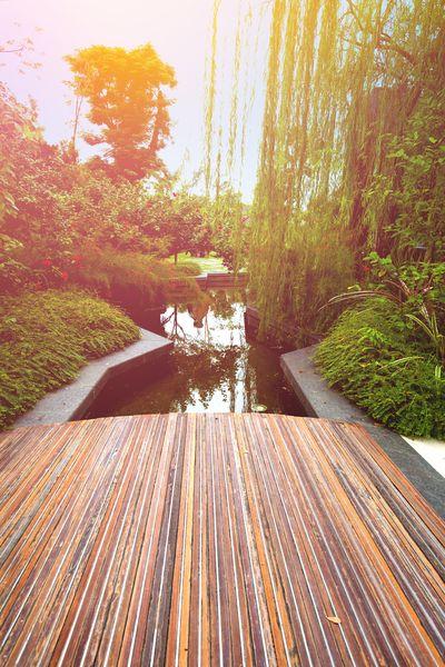 3D Фотообои «Терраса с выходом в современный сад»