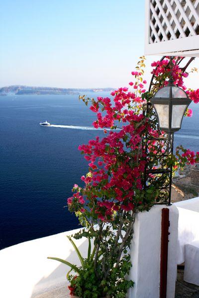 """Фотообои """"3D Фотообои «Яркие цветы на балконе. Санторини»"""""""
